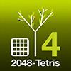 S4-2048 Tetris